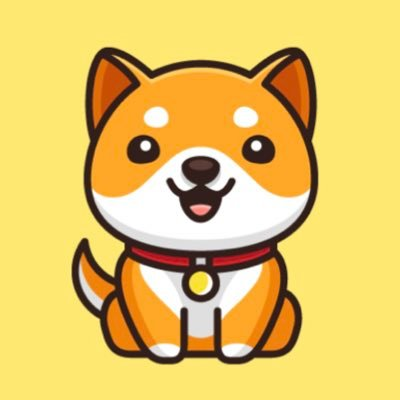 Baby Doge Coin jobs