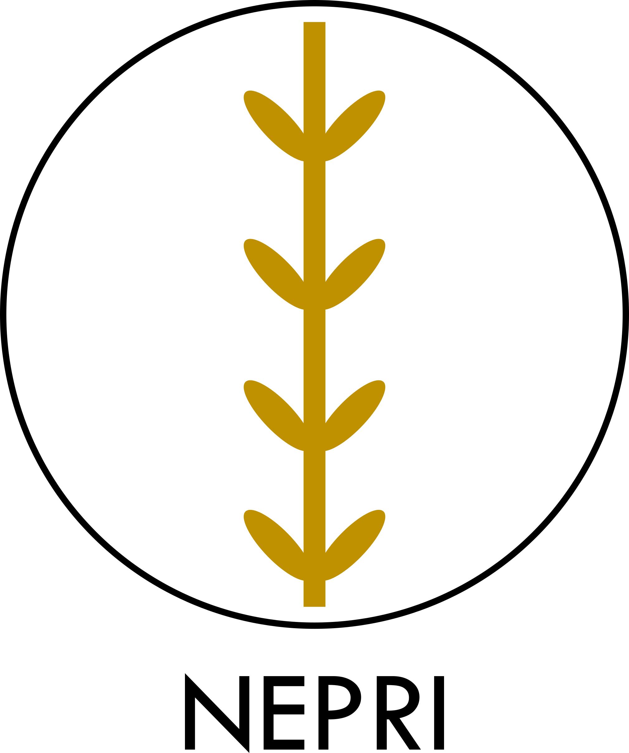 NEPRI blockchain jobs