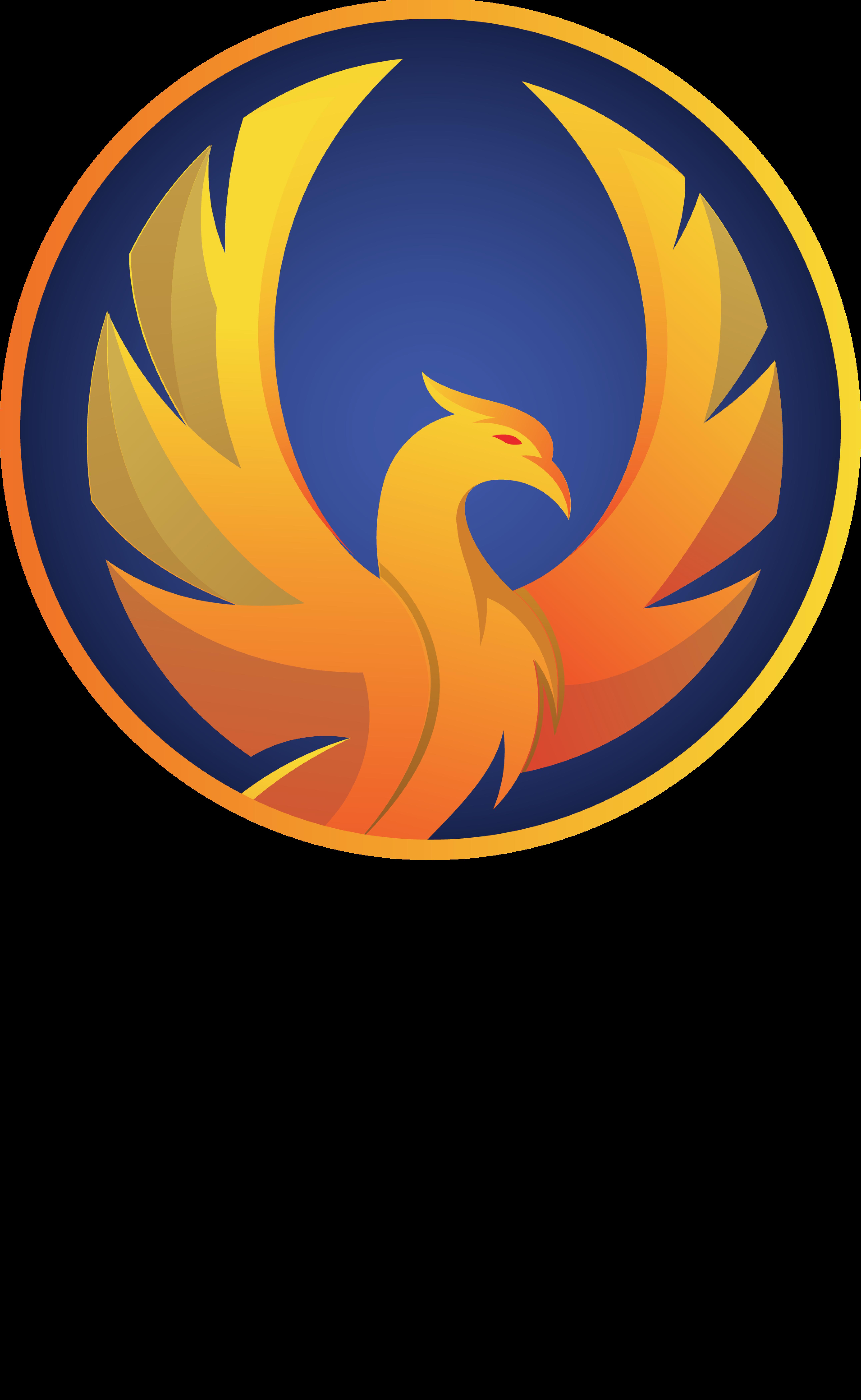 Firebird Finance jobs