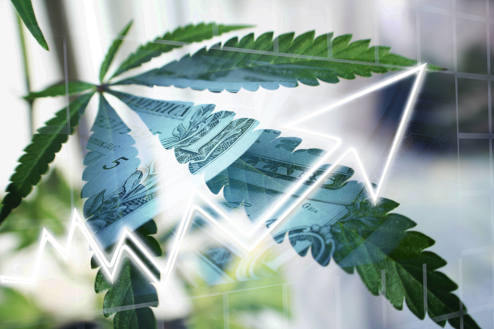 cannabis-industry-growing