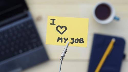 job-love-search-2019
