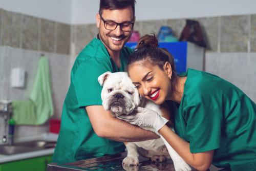 two-vets-hugging-dog