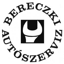 Autószervíz Bereczki Autóüveg, szélvédő javítás Dány Kartal