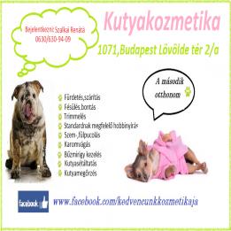 Kisállatpanzió Kedvencünk Kutyakozmetikus Budapest - VII. kerület Budapest - VII. kerület