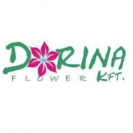Dorina Flower Kft. Kertépítés Ercsi Érd