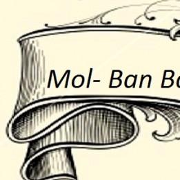 Mol-Ban  Bauhaus kft Földmunka Nyársapát Jászfényszaru