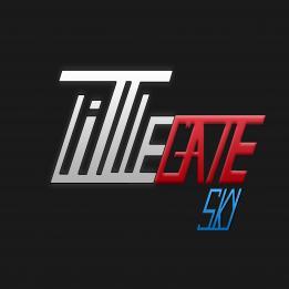 Littlegate Sky Kft. Online marketing Csopak Veszprém