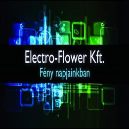 Electro Flower Kft. - Kasza János -  - Sárisáp