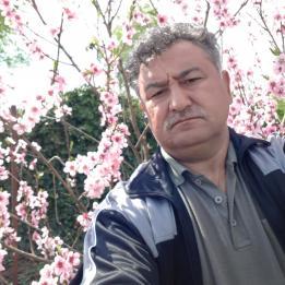 Balog Kálmán Szobafestő, tapétázó Mikepércs Debrecen