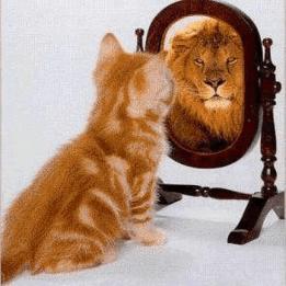 Önérvényesítés Pszichológus Szerencs Szerencs