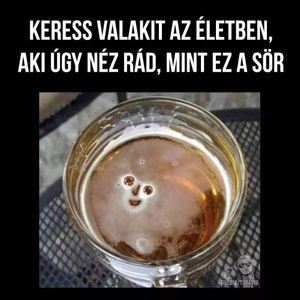 Bodor Ferenc -  -