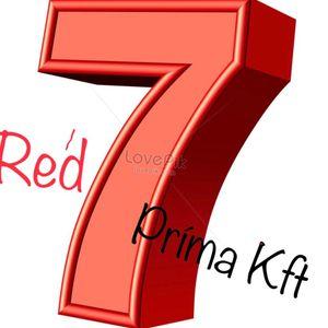 Red Seven Prima Kft. Bagi Ágota Karosszéria lakatos Fegyvernek Jászladány