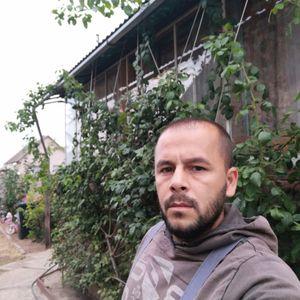 Magyar István Fakitermelő Sopron Nyíregyháza