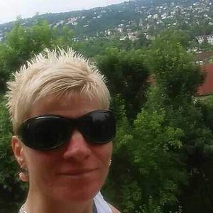 Bilics Gabriella Futárszolgálat Veresegyház Budapest - XII. kerület