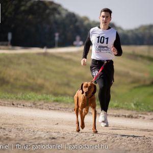 Ujj Zoltán Kábeltévés, antenna szerelő Fertőd Rábapordány