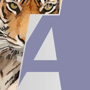 Tiger Agency Kft. Ablakcsere, nyílászáró beépítés Cece Siófok