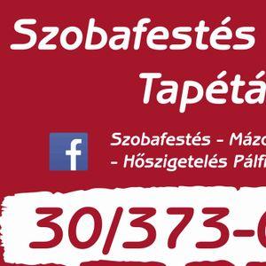Pálfi Gergely Szobafestő, tapétázó Mindszentgodisa Dombóvár