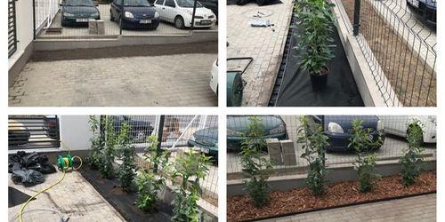 Kertész Nagylók Budapest - XXIII. kerület