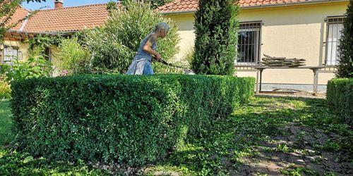 Kertész Keszthely Keszthely