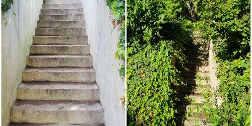 Kertész Somogytúr Balatonlelle