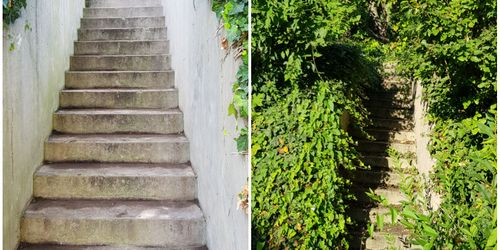 Kertész Balatonlelle Balatonlelle
