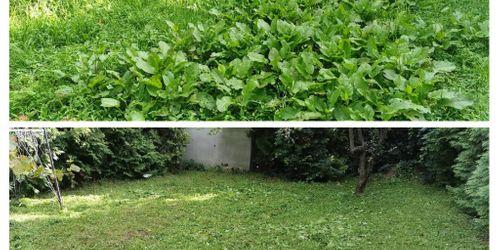 Kertész Somogytúr Keszthely