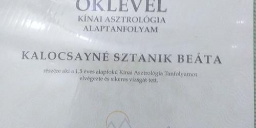 Kalocsayné Sztanik Bea referencia kép 0