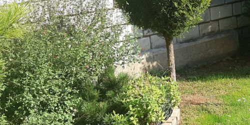 Kertépítés Délegyháza Budapest - XX. kerület