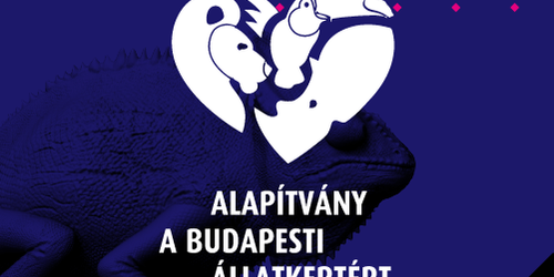 Online marketing Hernád Budapest - V. kerület