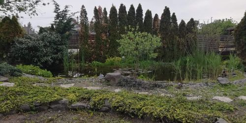 Kertész Balatonlelle Pápa