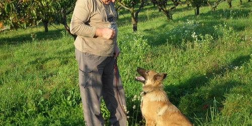 Kutyakiképző Aszófő Balatonfüred