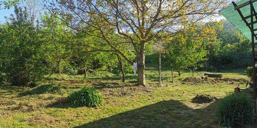 Kertész Nyékládháza Dombóvár