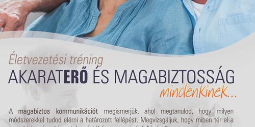 Programozó Budapest - XX. kerület Pécel