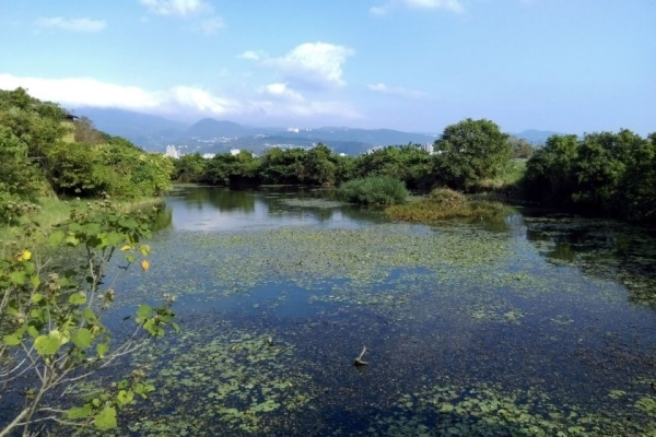 Guandu-Nature-Park-things-to-do-in-Taipei