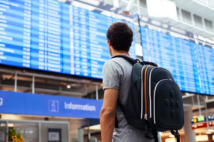 The Government of Japan plans to lift entry bans from October 2020
