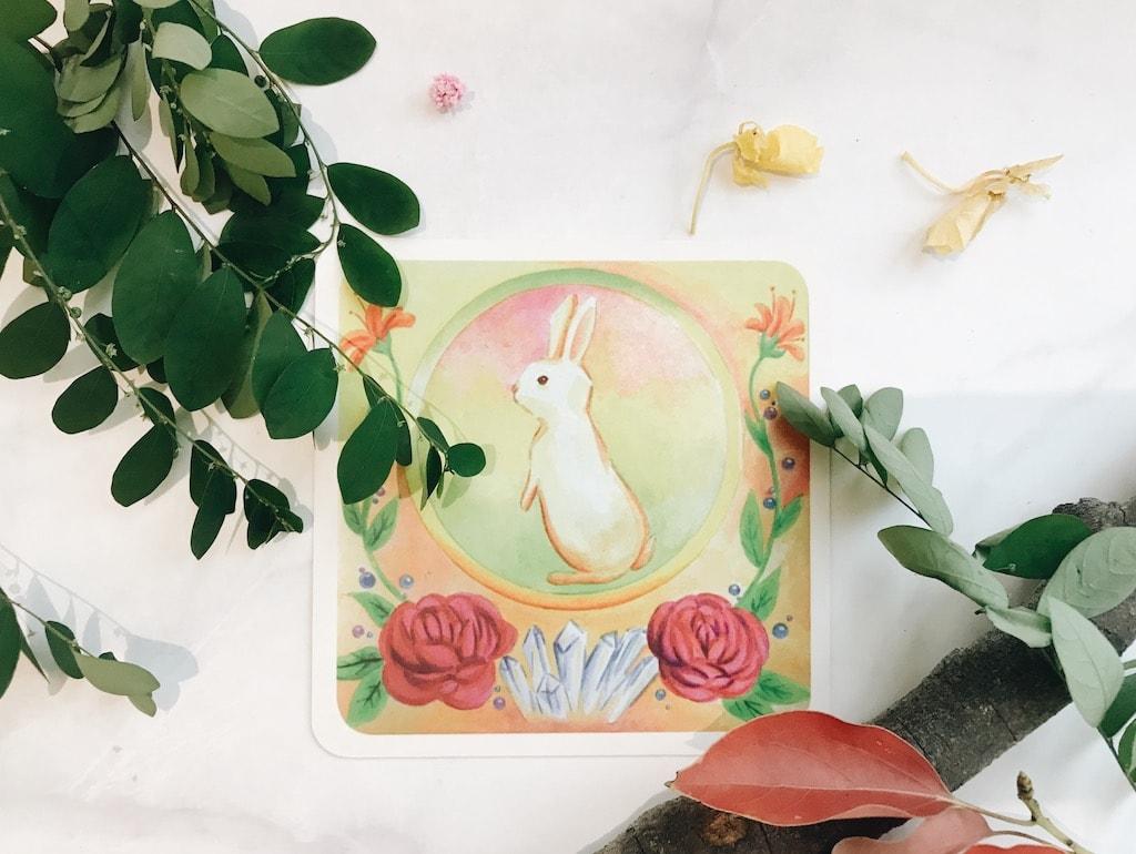 12月水晶兔子之月 與宇宙共同創造,一起合作,奉獻彼此