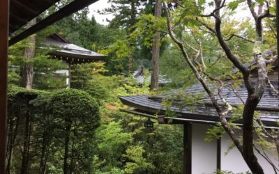 賴生芳老師|四安生活禪氣場照與系列課程