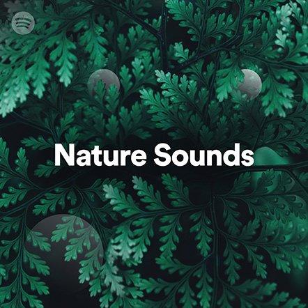 nature-sounds-2.jpg