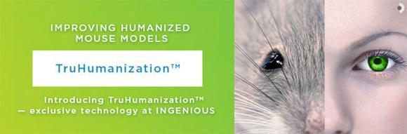 TruHumanization™ヒト化マウスモデル作製受託サービス