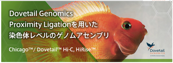 ゲノムアセンブリ受託サービス Dovetail Genomics