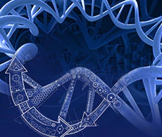 High-Q Strings DNA Fragments