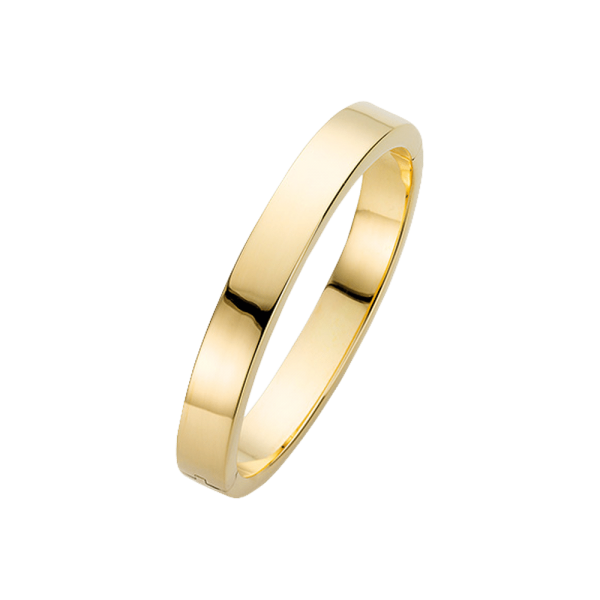 Clioro Sense of style Ring