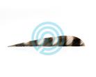 "Trueflight Feathers 4"" Parabolic Barred"