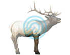 Delta McKenzie Target 3D HD Elk Midsection