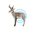 Delta McKenzie Target 3D Antelope Midsection