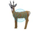 SRT Target 3D Roe Deer