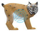 SRT Target 3D European Lynx