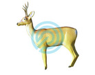 Eleven Target 3D Deer with Horns