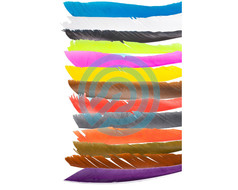 Trueflight Feathers Full Length SpiralWrap Flu-Flu