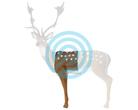 SRT Target 3D Fallow Deer Hit-Section